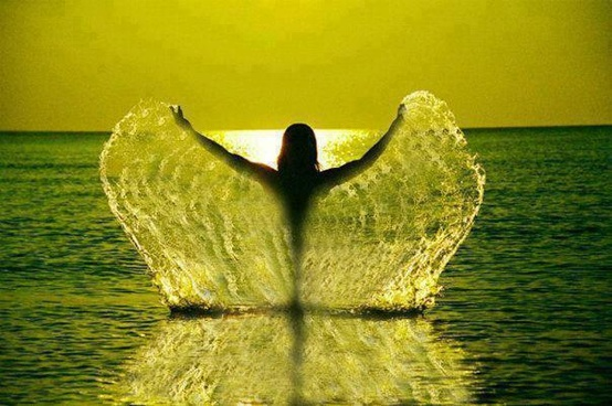 water angel