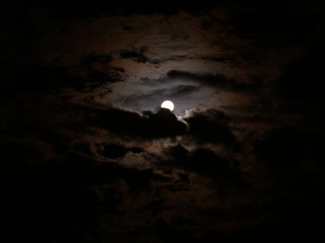 dark-night