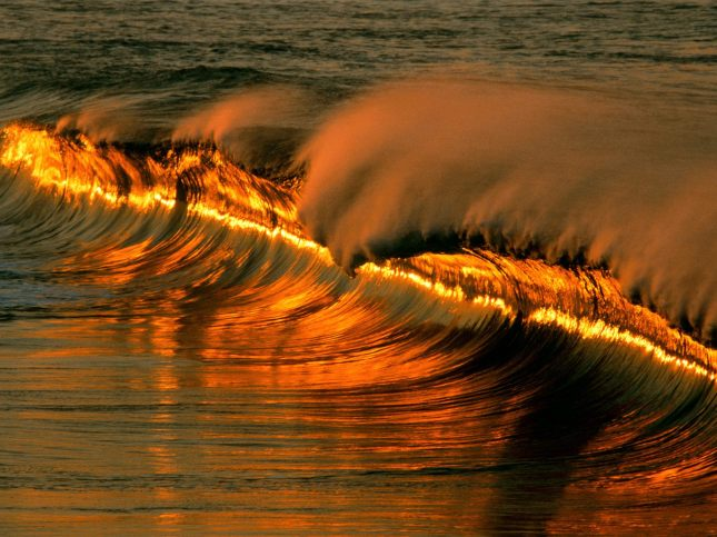 golden_wave_
